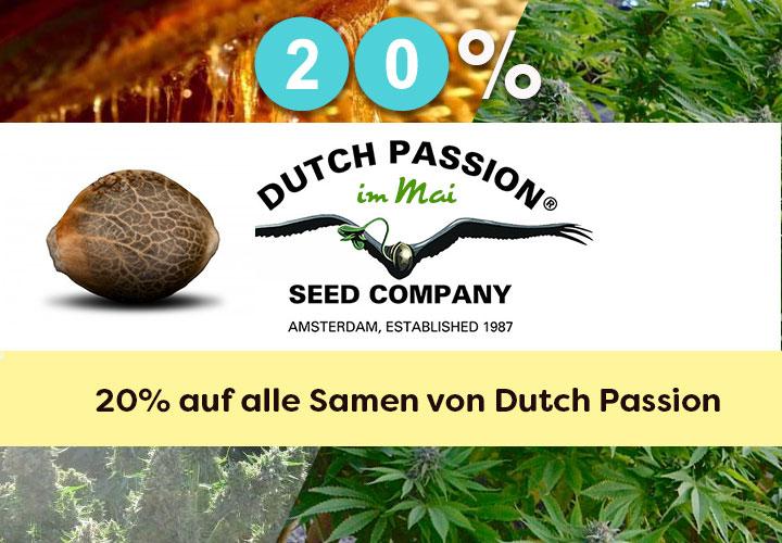Den ganzen Mai gibt es 20% auf alle Cannabissamen von Dutch Passion