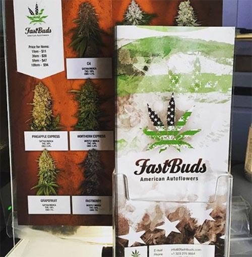 Fast-Buds Seedbank