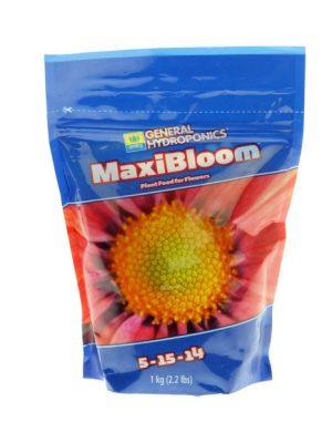Maxi Bloom