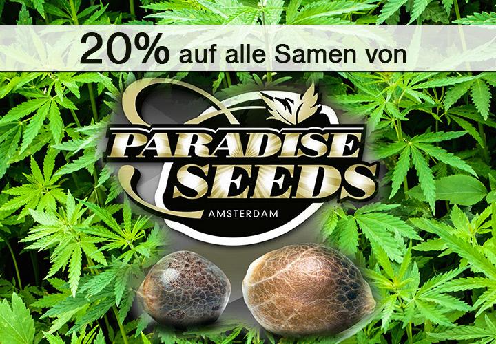 20% auf alle Cannabis Samen von Paradise Seeds