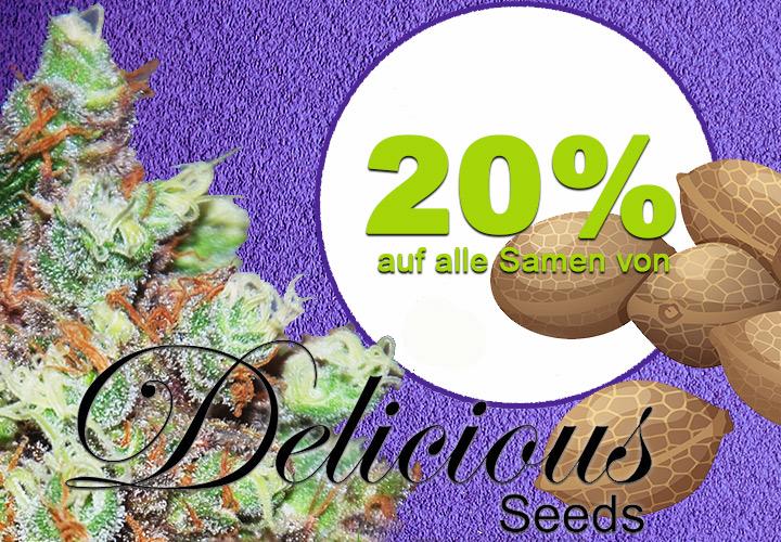 20% auf alle Cannabis Samen von Delicious Seeds