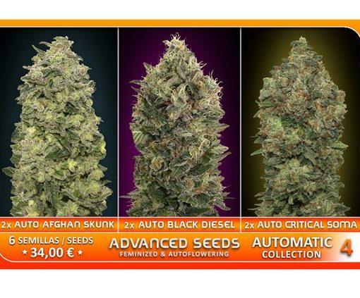Automatic Collection 4 von Advanced