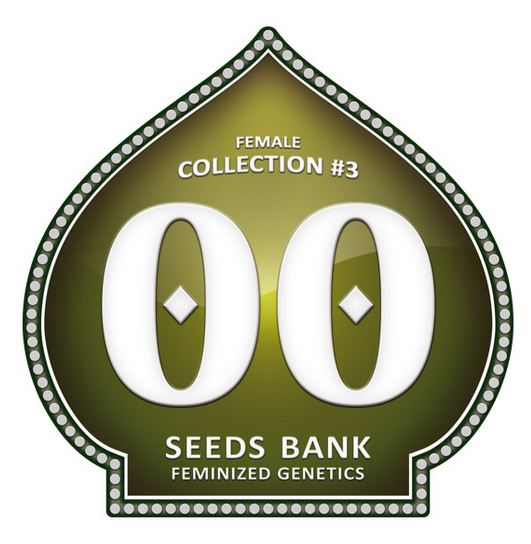 Female Collection #3 von 00 Seeds
