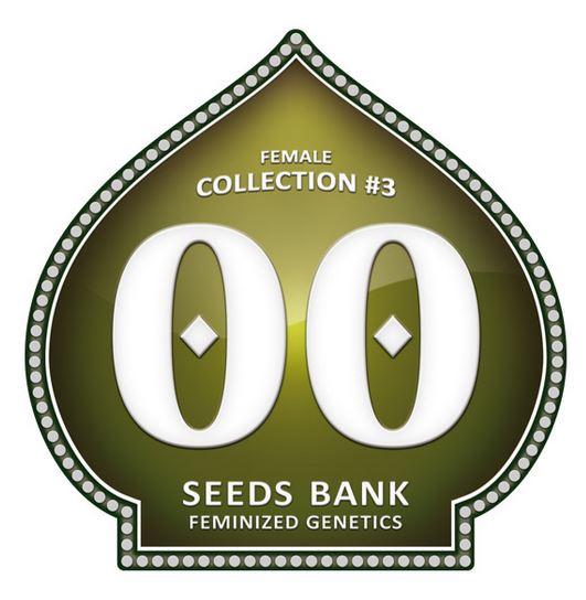 Female Collection #3 von 00 Seeds