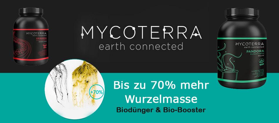 Mycoterra-1