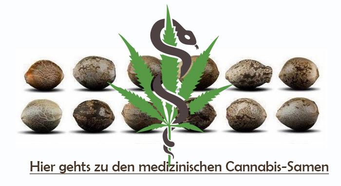 medizinische-Cannabis-Samen-kaufen