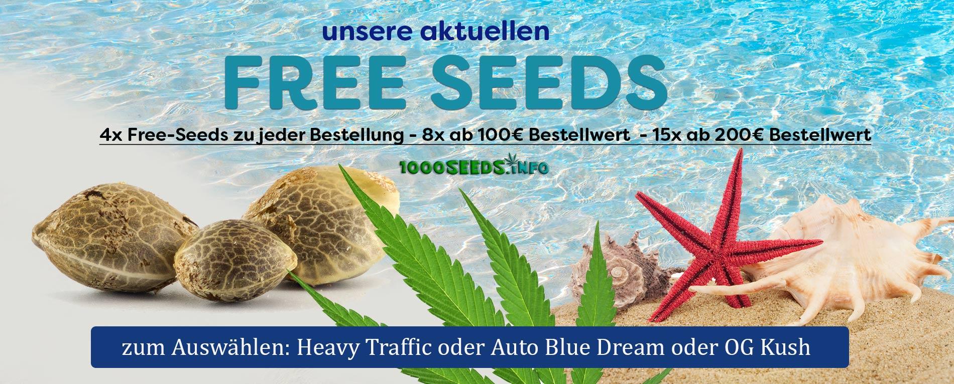 Free Seeds Cannabis