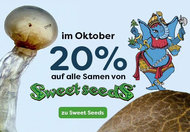 Prozente auf Sweet Seeds, 20% auf alle feminisierten Samen und Automatic Cannabis Seeds