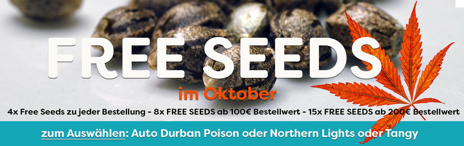 Gratis Cannabis Seeds im Oktober, Free Seeds zu jeder Bestellung