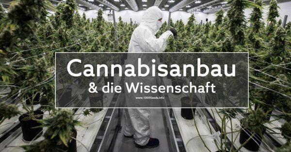 Cannabisanbau-und-die-Wissenschaft