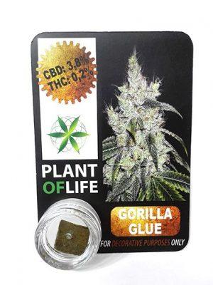 Gorilla Glue Polen