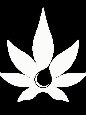 Seedshop 1000seeds