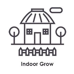indoor-grow