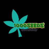 1000Seeds-Cannabis-Samen