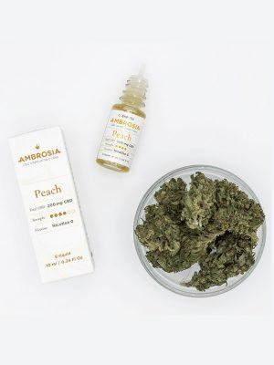 Ambrosia-Pfirsich