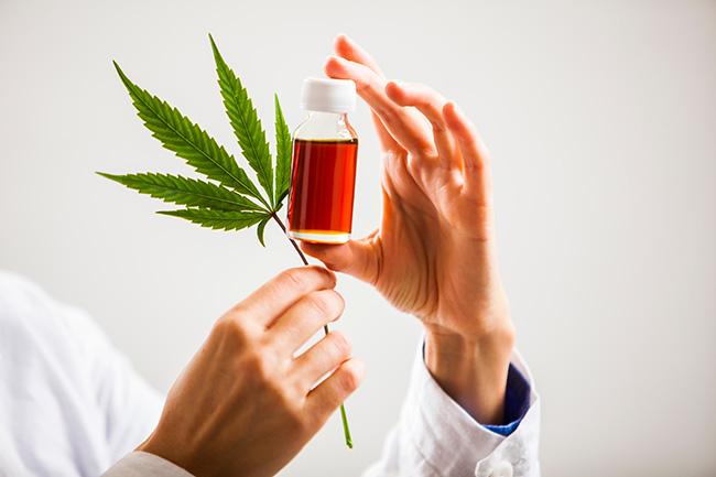 Cannabis-Schmerztherapie