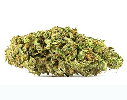 Cannabis-Sorten gegen Schmerzen