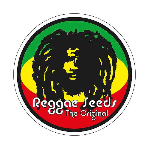Reggae-Seeds-Samen
