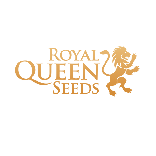 Royal-Queen-Seeds