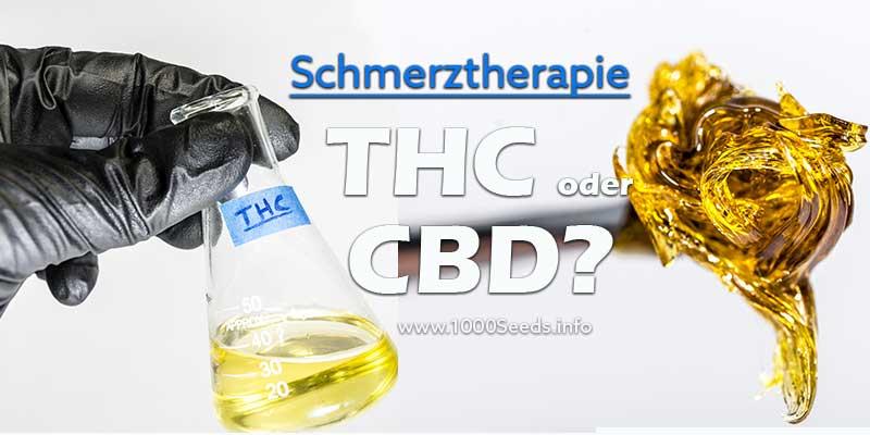 THC-oder-CBD-Schmerztherapie