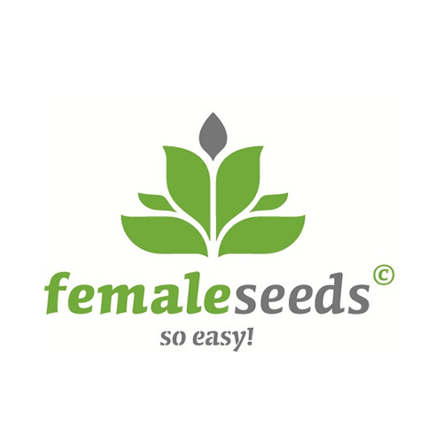 female-Seeds-Samen
