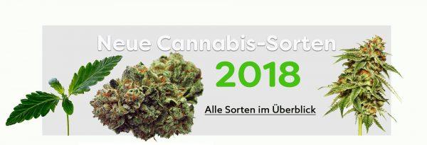 neue-Cannabis-sorten-2018
