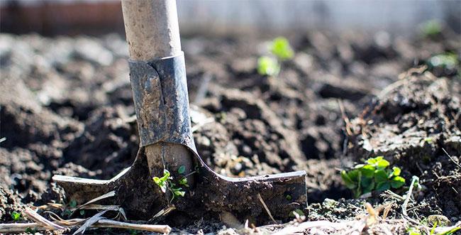Boden-aufbereiten-outdoor-Grow