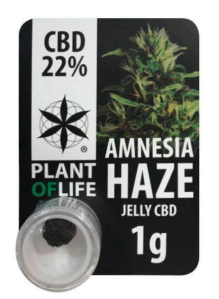 CBD Jelly Amnesia Haze (Plant of Life), 22% CBD, 1g