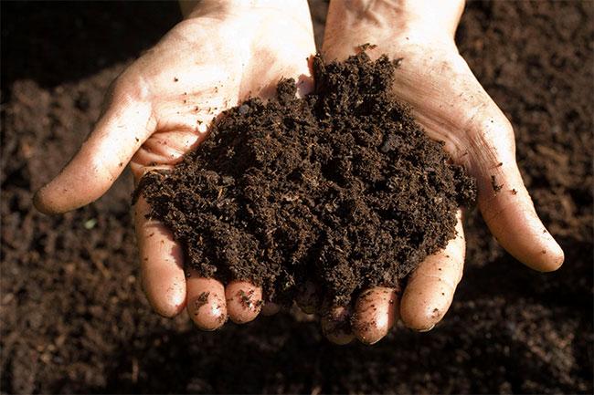 Grow-Outdoor-Bodenverbesserung