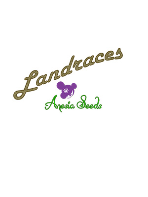 LANDRACES