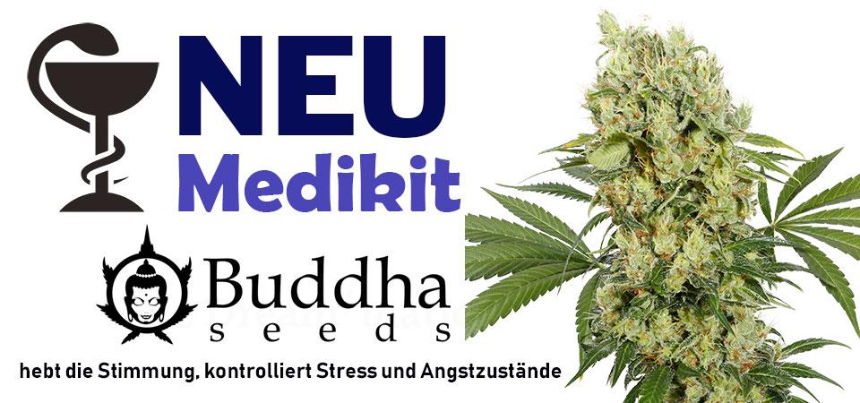 Medikit-Buddha-Seeds-neu