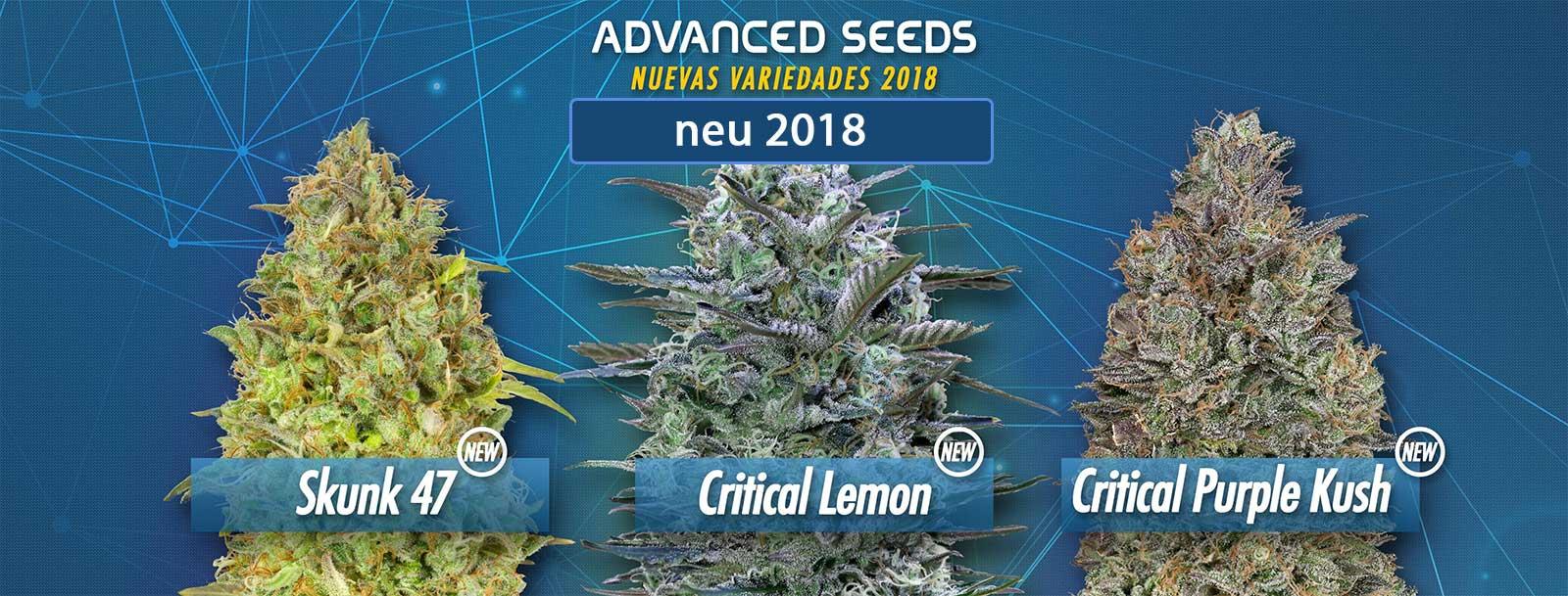 Neu-Advanced-Seeds