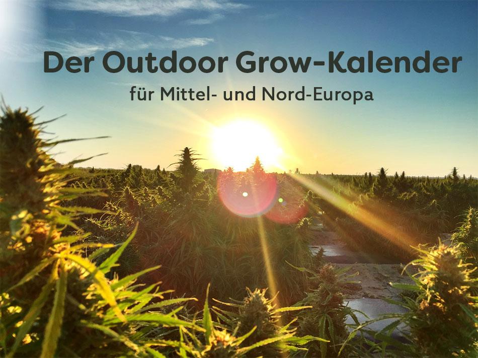 Outdoor-Grow-Kalender-Nordeuropa