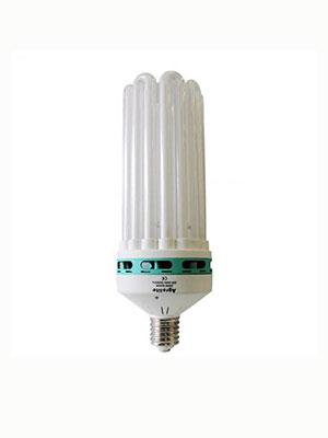 Energiesparlampen (ESL)