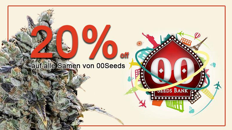 Im Juni gibt es 20% auf alle Cannabissamen von 00 Seeds, außerdem gratis Seeds zu jeder Bestellung