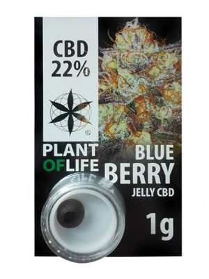 CBD Jelly Blueberry