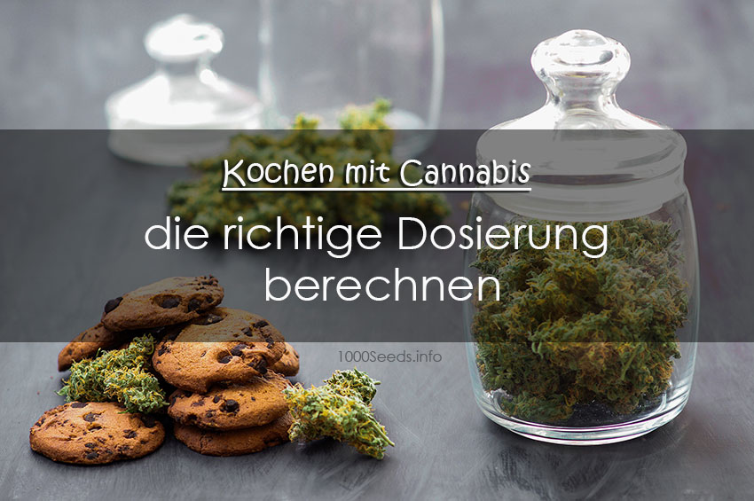 richtige Dosierung Cannabis