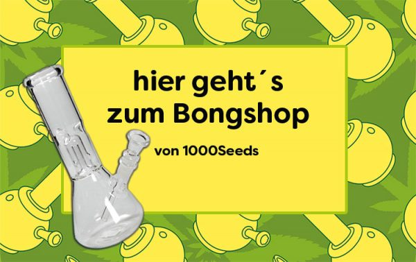Bongshop 1000Seeds
