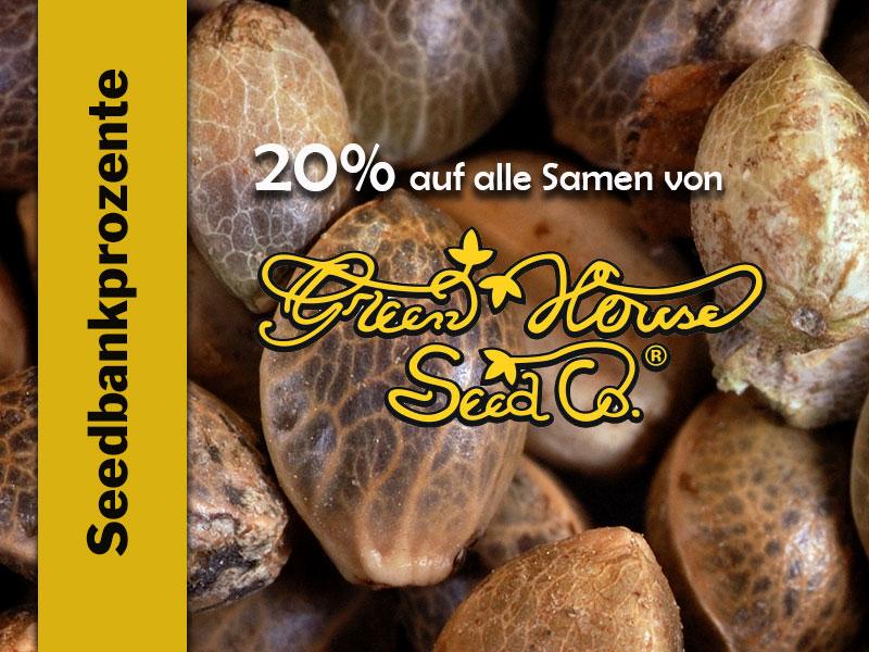 Im Oktober erhältst Du 20% auf alle Cannabissamen von Green House Seeds