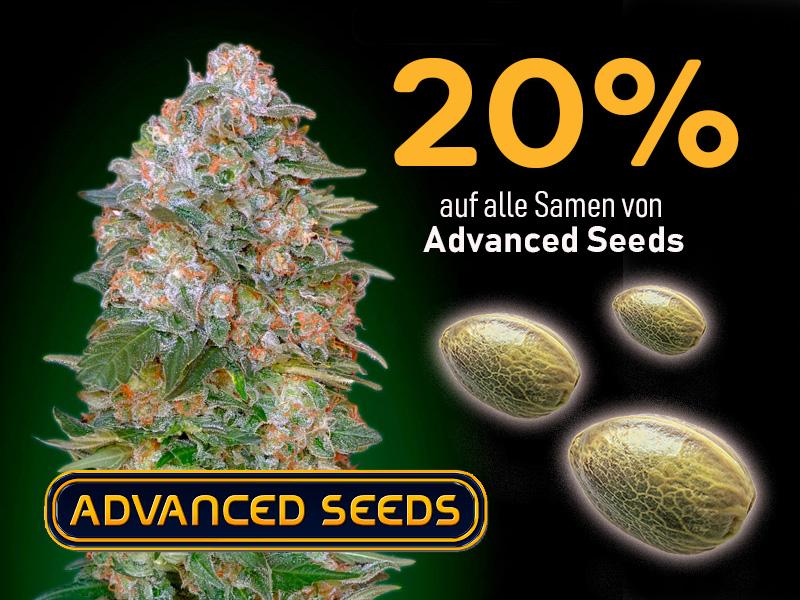 20% auf alle Cannabissamen von Advanced Seeds