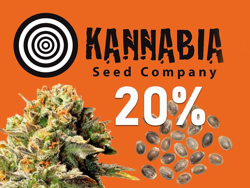 20% auf alle Cannabissamen von Kannabia