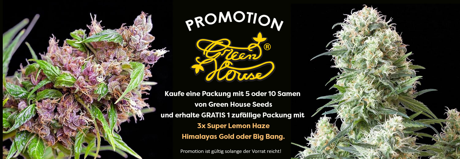 Promotion-Greenhouse-Seeds