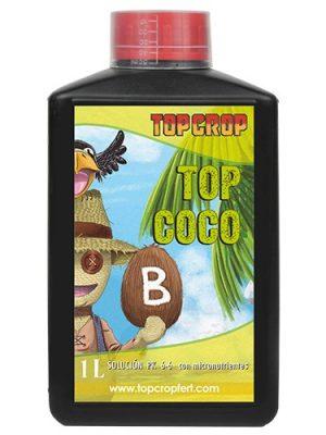 Top Coco B von Top Crop