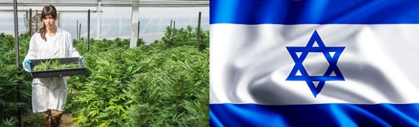 medical-Cannabis-Israel