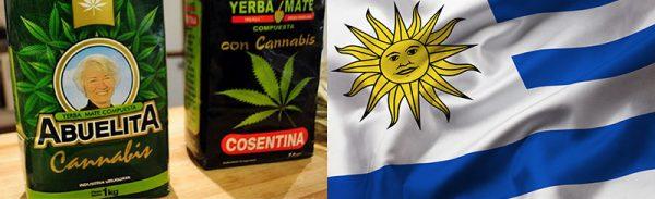 medical-Cannabis-Uruguay