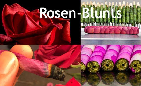 Cannabis-Rosen-Blunt