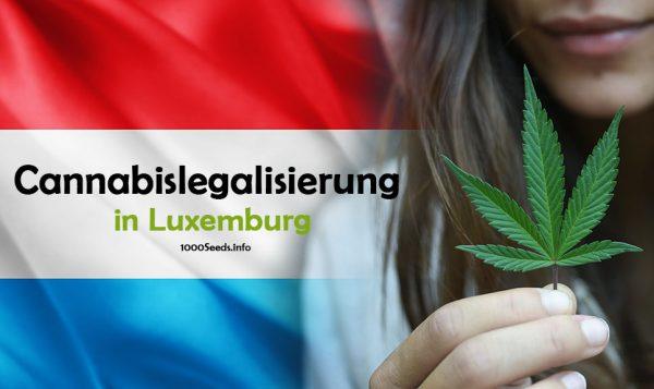 Legalisierung-Luxemburg