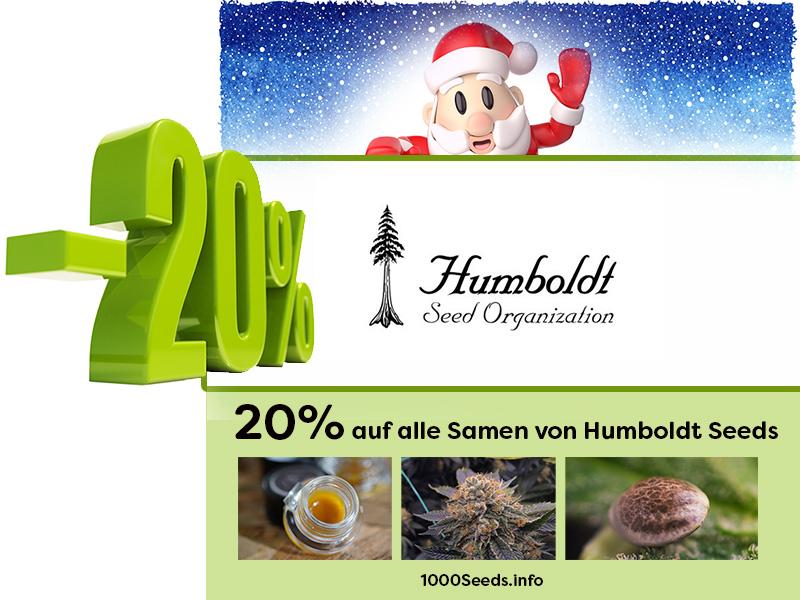 Den ganze Dezember gibt es 20% auf alle Cannabissamen von Humboldt Seeds, dazu Free Seeds und vieles mehr
