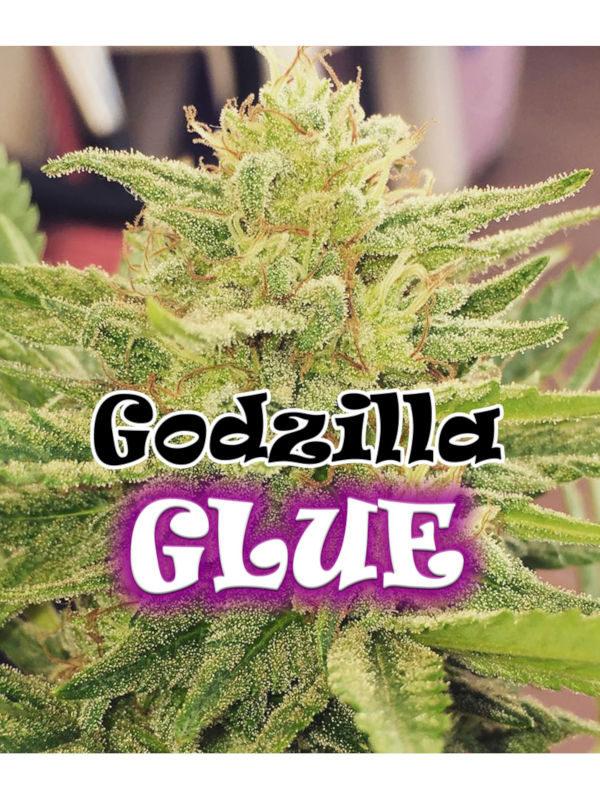 Godzilla Glue von Dr. Underground