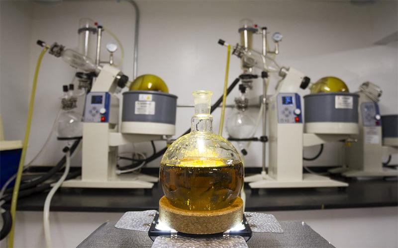 Kurzweg-Destillation-Cannabis